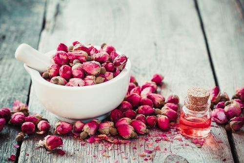 Изготовление розового масла в домашних условиях